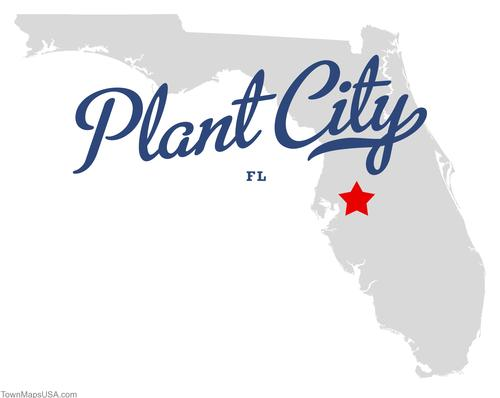 website design services for plant city, marketing and adverting help
